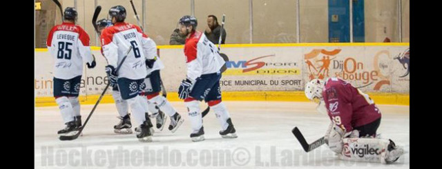 dhc-angers-pinto